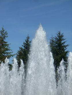 Microsoft fountain