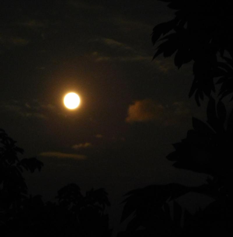 Moon3 (1)