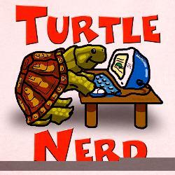 Ringer_turtle_nerd_tshirt