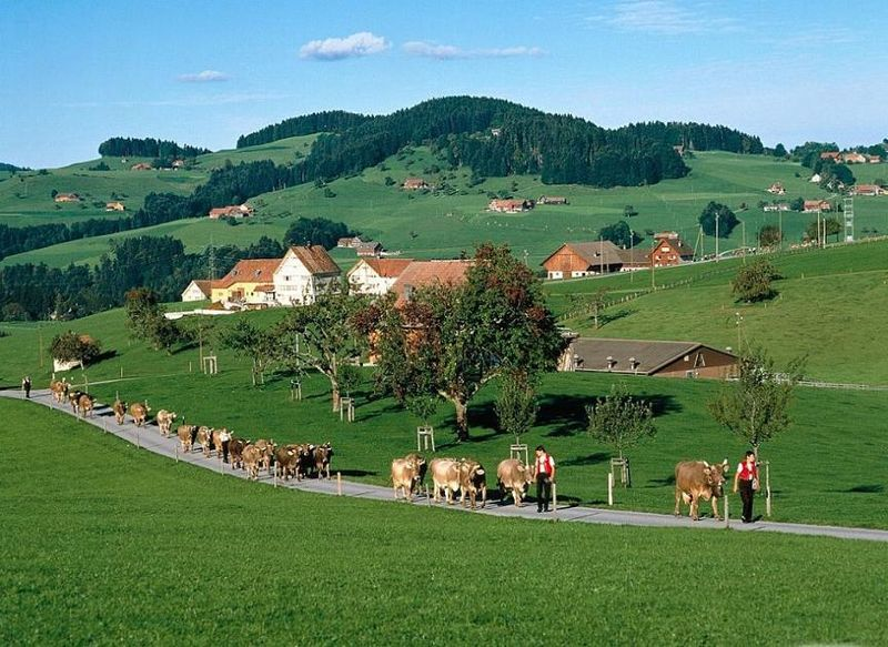 Rural switzerland