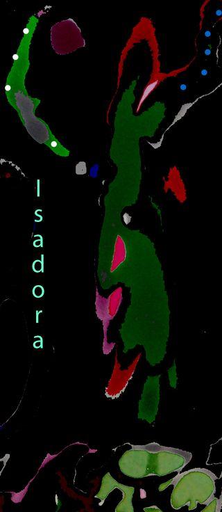 Isadora_edited-2